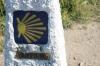 Cammino di Santiago primitivo : alla ricerca delle origini
